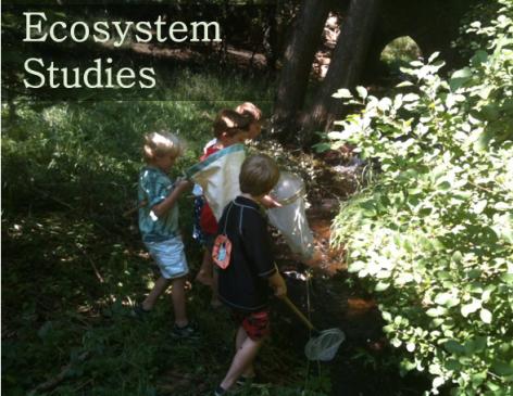 ecosystem studies.png
