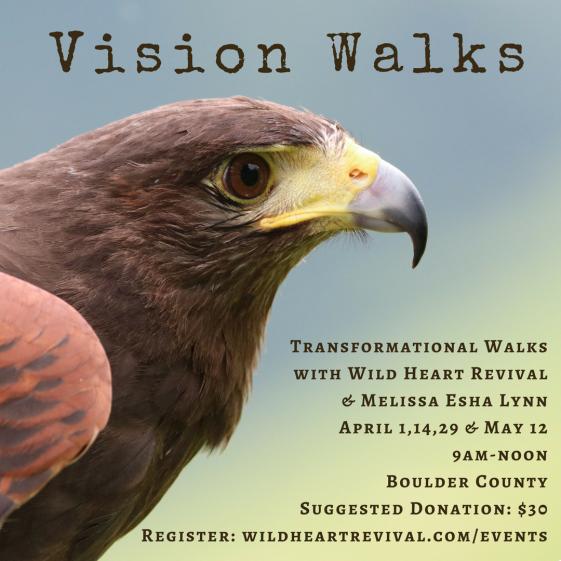 Spring Vision Walks 2018.png