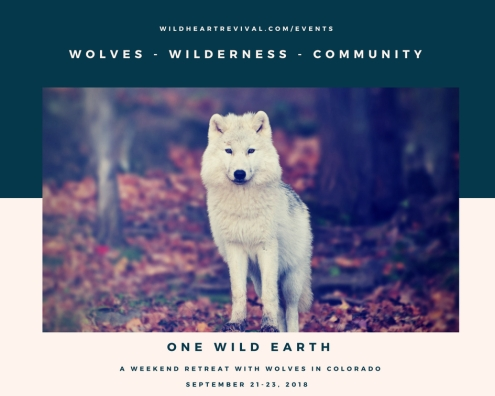One Wild Earth